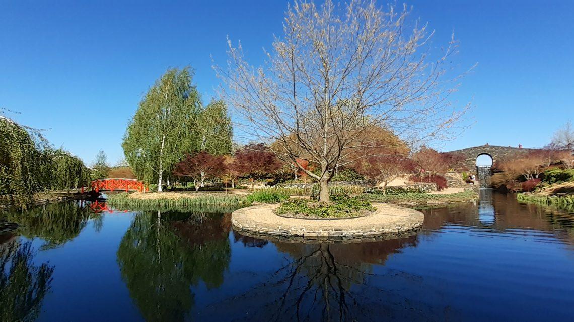 Spring in Mayfield Garden